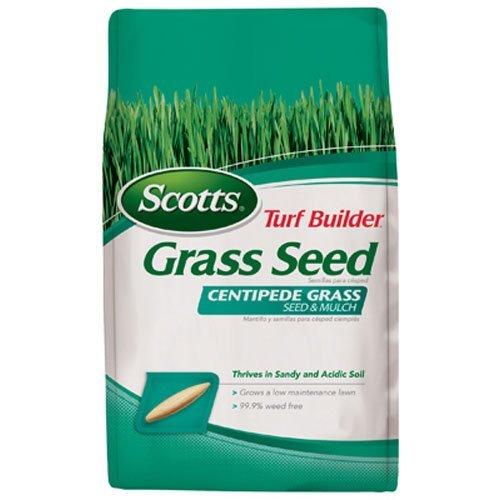 Scotts Turf Builder Grass Seed