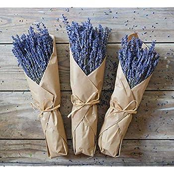 1 Pack BELUPAI Lavender Bundle Natural Dried Flower Purple Lavender Bouquet for Home Party Wedding Decoration Bouquet