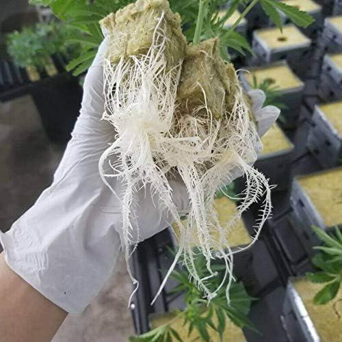 fsttm88 25X25X40Mm Steinwolle Anbau,Rockwool Hydroponic Growth Cube Soilless Anbau Compression Base Geeignet f/ür Verschiedene Pflanzen