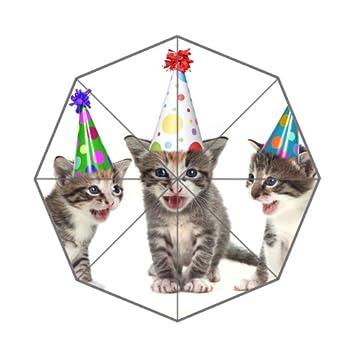 Flipped Summer Paraguas de Verano con Diseño de Gatos Divertidos y Personalizado, para Cumpleaños, Diseño de Gatos: Amazon.es: Deportes y aire libre