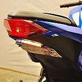 Kawasaki Ninja 300 Fender Eliminator (2013-Present) - New Rage Cycles
