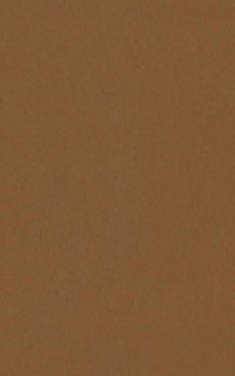 poster palooza brown 16x20 backing board uncut photo mat board