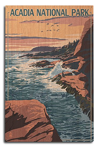 Lantern Press Acadia National Park, Maine - Mount Desert Island (10x15 Wood Wall Sign, Wall Decor Ready to Hang)