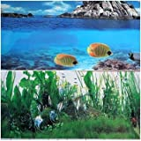 """Product review for 15 Inch Height Double Sided Aquarium Rock Background Terrarium Decoration (36""""(L) x 15""""(H))"""