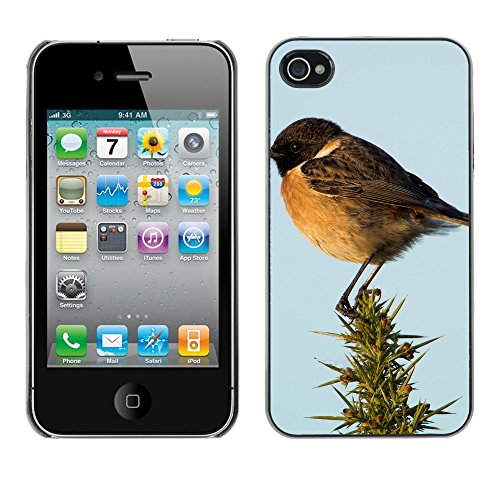 Premio Sottile Slim Cassa Custodia Case Cover Shell // F00031239 Oiseau chanteur // Apple iPhone 4 4S 4G
