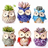 Claywa Ceramic Owl Succulent Pots Cute Animal Plant Planters 2.75'' to 3.35'' with Drainage Pack of 6