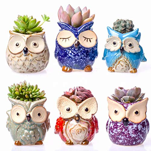 Claywa Ceramic Owl Succulent Pots Cute Animal Plant Planters 2.75 to 3.35 with Drainage Pack of 6