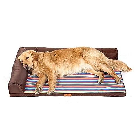 Stazsx Cuccia Lavabile Golden Retriever Dog Mat Cane Medio Grande