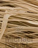 OASIS® Long Raffia - Natural (500g pack)