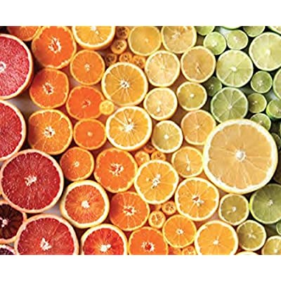 Citrus Gradient Puzzle by Brittany Wright - 750 Pieces: Toys & Games