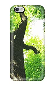 Pretty SbTyhRX2585wYitS Iphone 6 Plus Case Cover/ Tree Series High Quality Case