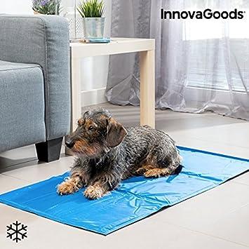 InnovaGoods IG811440 Esterilla Refrigerante para Mascotas, 90 x 50 cm: Amazon.es: Productos para mascotas