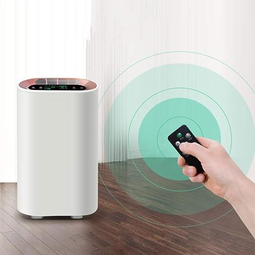 KJRJJH Purificador de aire con filtro HEPA Verdadero, Calidad del ...