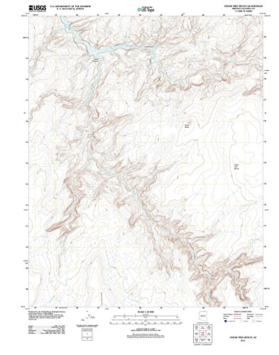 Arizona Maps | 2011 Cedar Tree Bench, AZ USGS Historical Topographic Map | Cartography Wall Art | 24in x 30in