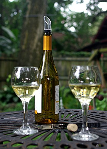 Wine Chiller: BlizeTec 3-in-1 Stainless Steel Wine Bottle Cooler Stick with Aerator and Pourer by BlizeTec (Image #5)
