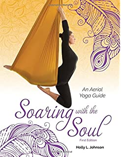Aerial yoga the low fly zone the aerial attitude volume 2 soaring with the soul an aerial yoga guide fandeluxe Choice Image