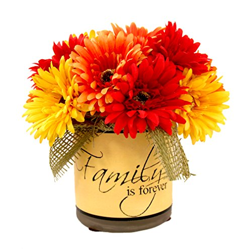 Fall Daisy Basket - Creative Displays Assorted Gerber Daisies in An Inspirational Container with Burlap Ribbon