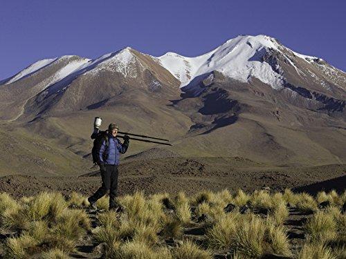 Bolivia: The Altiplano -
