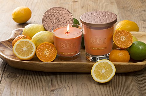 Root Legacy Veriglass Scented Beeswax Candle, Small, Wooded Citrus