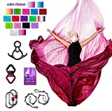 Aerial Silks Deluxe Equipment Set for Aerial Yoga, Aerial Yoga Hammock, Aerial Acrobatic,Circus Arts, Aerial Dance(L:10m W:2.8m (Gradual Change Pink)