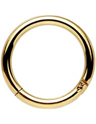 """Body Candy Gold Anodized Stainless Steel Hinged Segment Ring Circular Barbell 14 Gauge 3/8"""""""