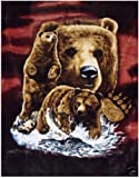 Artist Steven Michael Gardner Find 8 Brown Bears Blanket Queen