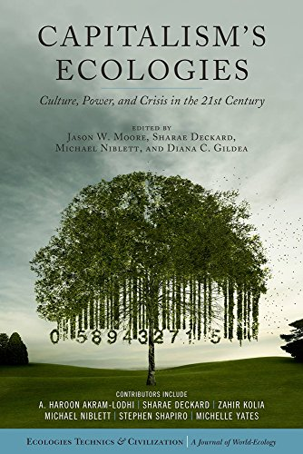 Capitalism's Ecologies: Culture, Power, and Crisis in the 21st Century