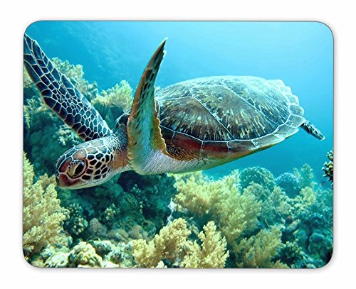 QJ CMJ Green sea Turtle Mouse pad, Natural Rubber Mouse Pad, Quality Creative Wrist-Protected Wristbands Personalized Desk, Mouse Pad (9.5 inch x 7.9 inch) ()