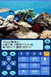Kokoro ga Uruou Birei Aquarium DS: Tetra - Guppy - Angelfish [Japan Import]