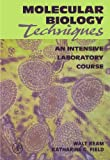 img - for Molecular Biology Techniques: An Intensive Laboratory Course book / textbook / text book