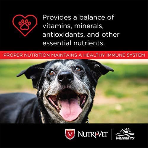 Nutri-Vet Chewables for Dogs.