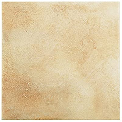 "SomerTile FNUBS9EA Ciencia Boston Porcelain Floor and Wall Tile, 8.75"" x 8.75"", Brown/Beige"