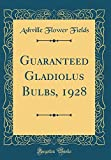 Amazon / Forgotten Books: Guaranteed Gladiolus Bulbs, 1928 Classic Reprint (Ashville Flower Fields)