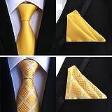 XTAPAN Men's Wedding Tie Handkerchief Woven Classic Necktie & Pocket Square Set 49-48