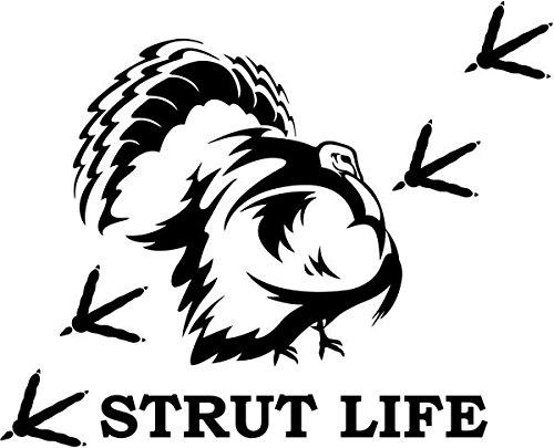 08 Strut - 7