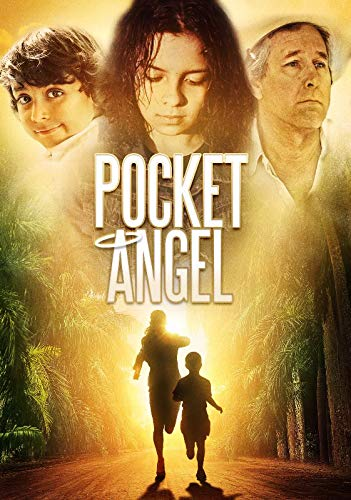 (DVD-Pocket Angel)