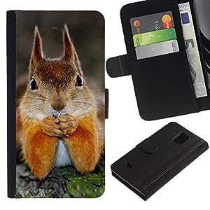 eJoy---La carpeta del tirón la caja de cuero de alta calidad de la PU Caso protector - Samsung Galaxy S5 Mini, SM-G800 - --Cute Squirrel