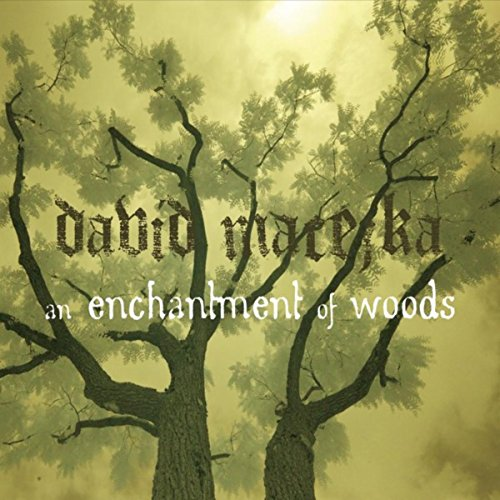 An Enchantment of Woods