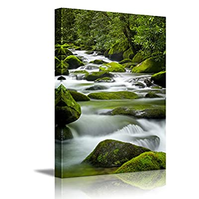 Beautiful Scenery Silky Water Cascading Over Bright Green MossCovered Boulders in a Tennessee Stream ing ped - Canvas Art Wall Art - 36