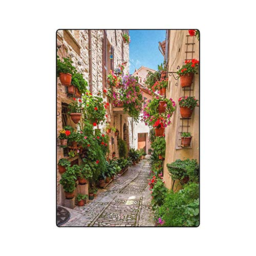 INTERESTPRINT Historical Mediterranean Porch with Flowers in Small Italian Town Soft Fleece Velvet Blanket Throws for Couch Living Room Office for Men Women Boys Girls, 58 by 80 Inch