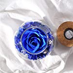 SANRAN-Handmade-Preserved-Real-Rose-Present-Gorgeous-Led-Mood-Light-Upscale-Gift-Exquisite-Eternal-Flower-Birthday-Anniversary-Valentines-Day-Christmas-Thanksgiving-Day-Ocean-Blue