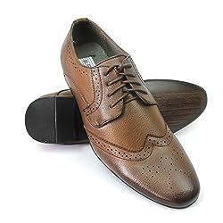 Bravo Wing Tip Brown Men's Dress Shoes Klein 4 (7.5 U.S)
