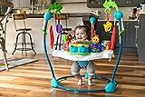 Baby Einstein Neighborhood Symphony Activity Jumper