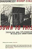 Front cover for the book DOWN TO THIS: Squalor and Splendour in a Big-City Shantytown by Shaughnessy Bishop-Stall