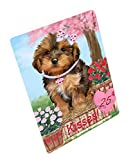 Doggie of the Day Rosie 25 Cent Kisses Yorkipoo Dog Blanket BLNKT125859 (50x60 Sherpa)