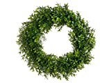 17'' Boxwood Wreath Two Tone Green (Pack of 6)