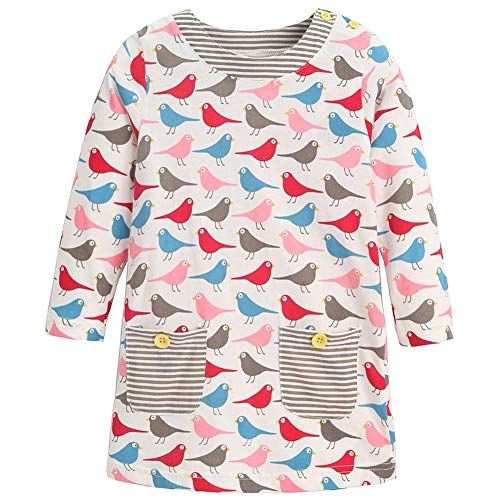 Frogwill Girls Long Sleeve Striped Jersey Casual Dresses Tunics 18M-8Y (7T, Birdie) ()