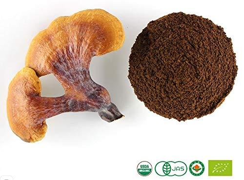 Certified Organic Ganoderma Reishi Mushroom Spore Extract 30g