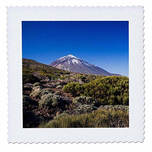 3dRose Danita Delimont - Mountain - Spain, Canary Islands, Tenerife, Valle de la Orotava, Pico del Teide - 20x20 inch quilt square (qs_257877_8) by 3dRose