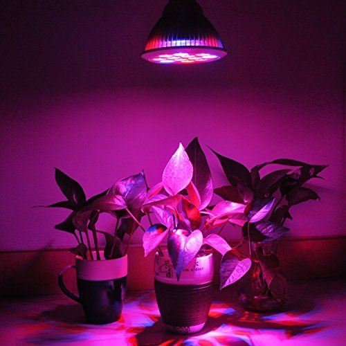 Sunthin 12W LED Plant Grow Bulb, Par30, E26, Growing Lamp For Garden Greenhouse, 3 Blue & 9 Red, 660nm and 630nm Red and 460nm Blue